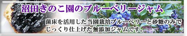 沼田きのこ園の無添加ブルーベリージャム
