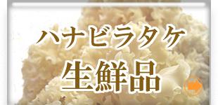 美味食感きのこ!生鮮ハナビラタケ