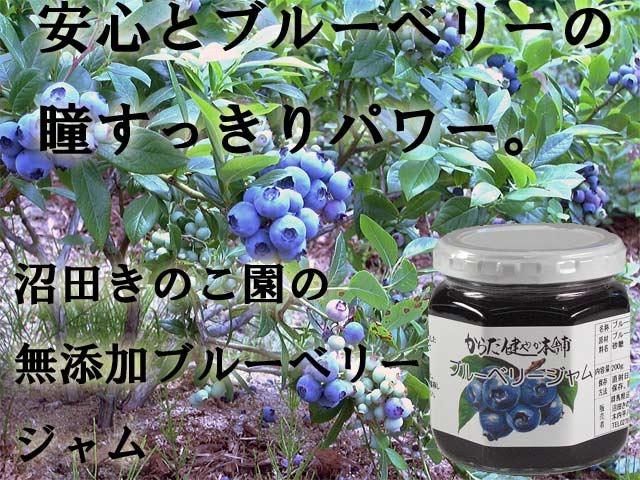 当園栽培ブルーベリーと砂糖だけでつくった安心のブルーベリージャム